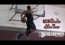 Šauniausi 2013 metų dėjimai pagal Dunkademics